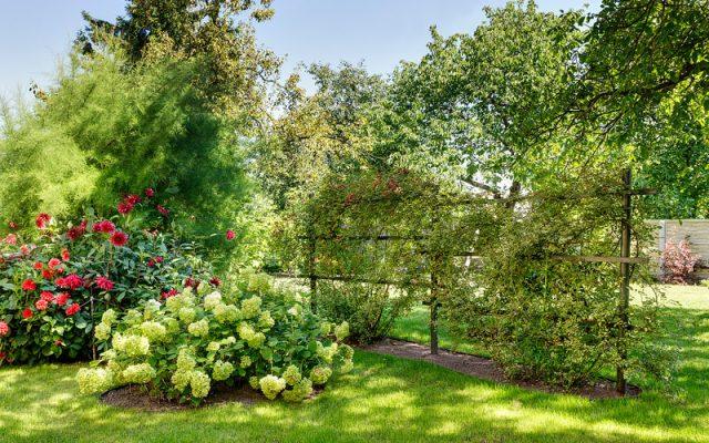 Eine Idee für Gartenästhetik