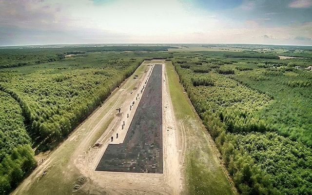 Forest Runway