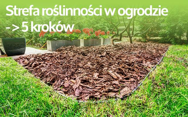 (Polski) Jak wyznaczyć strefę roślinności w pięciu krokach