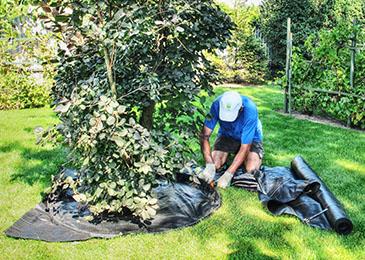 Krok 4 - montaż obrzeży ogrodowych