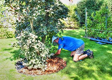 Krok 5 - montaż obrzeży ogrodowych