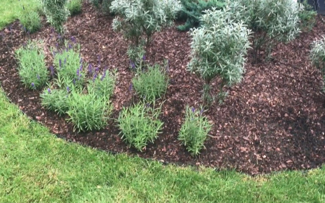 Installation of edging on flower beds
